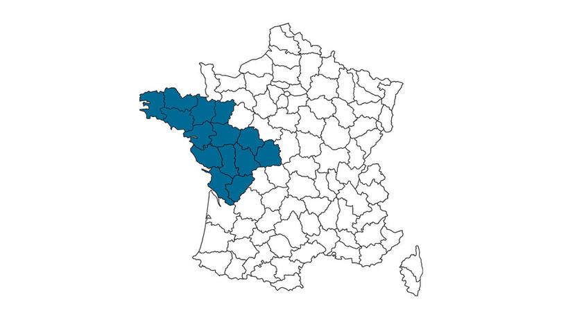 contact person, customer service, profile and map, Fatima Boukersi , rockfon, france, FR