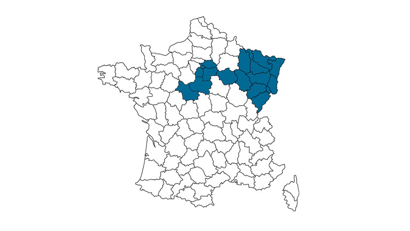 contact person, customer service, profile and map, Petra Lerasle, rockfon, france, FR